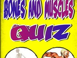 Bones and Muscle Quiz