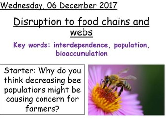 Year 7 Disruption to food chains and webs