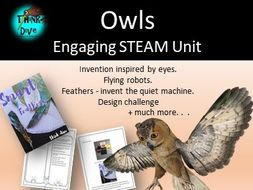 Owls - STEAM, Biomimicry for Young Children - US