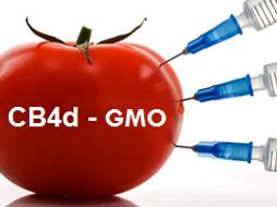 CB4d Edexcel 9-1- Genetically modified organisms - Lesson 7