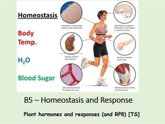 NEW AQA BIOLOGY GCSE (TS) - HOMEOSTASIS & RESPONSE - Lesson 16 – Plant Hormones & Responses [RP]