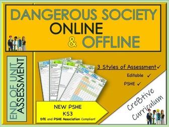 Dangerous Society Online and Offline Assessment