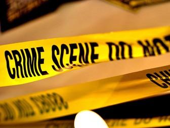 Murder in School, Problem Solving Mystery.