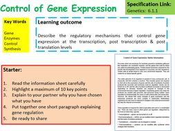 New OCR A Level Biology Control of Gene Expression Lesson
