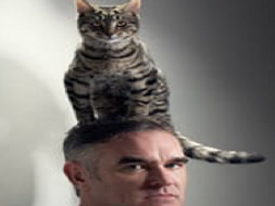 How to use gimp(using Morrissey and my cat)