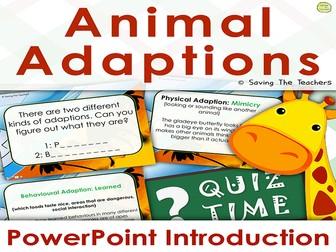Animal Adaptions PowerPoint & Quiz