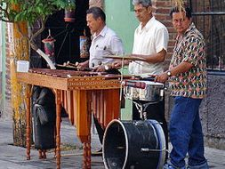 The Guatemalan marimba (1), Transportation in Honduras (2) -  thematic units - SP Intermediate 1