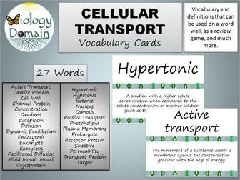 Cellular Transport Vocabulary Cards