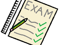 GCSE Computing Exam Style Question with Answer: Professional Standards