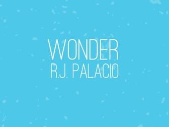 Wonder by RJ Palacio - Close Reading Lesson 2 - Mr Tushman
