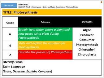 KS3: Photosynthesis