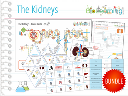 The Kidneys - 11x Games and Activities Bundle (KS4)
