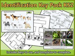 Identification Key Activities and Templates KS2