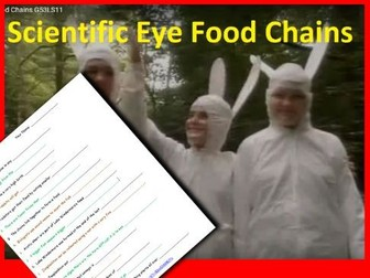 Scientific Eye: Food Chains Video Questions