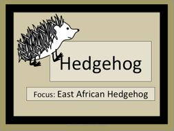 Hedgehogs: Just the Facts