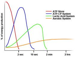 BTEC SPORT L3 UNIT 1 ANATOMY & PHYSIOLOGY: ENERGY SYSTEMS TEACHER POWERPOINT