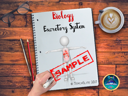 The Excretory System SAMPLE