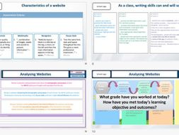 Multimedia: Identifying the Purpose, Demographics and Features of Websites.