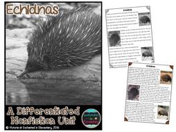 Differentiated Nonfiction Unit: Echidnas