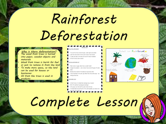 Rainforest Deforestation  -  Complete STEAM Lesson
