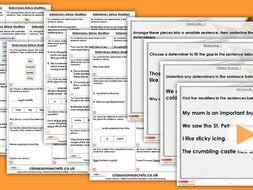 Grammar Year 4 Determiners before Modifiers Spring Block 3 Step 3