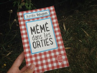 """""""Our of sorts"""" or """"Mémé dans les orties"""" Reading comprehension (Contemporary French fiction)"""