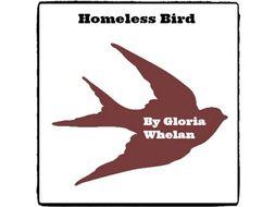 Homeless Bird - (Reed Novel Studies)