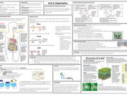 Unit 2 Organisation - summary for separate Biology AQA