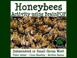 Honeybees Activity using BrainPOP