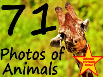 71 High Quality Photos Of Animals + 31 Fun Teaching Activities For These Cards