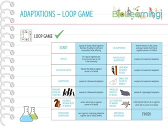Adaptations - Loop Game (KS5)