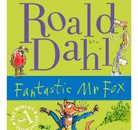 Fantastic Mr Fox by Roald Dahl - workbook