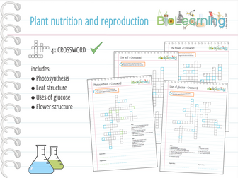 Photosynthesis equation crossword ks3ks4 by anjacschmidt plant nutrition and reproduction 4x crosswords ks3ks4 ccuart Image collections