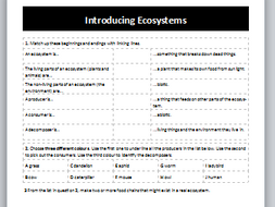 Introduction to Ecosystems Worksheet