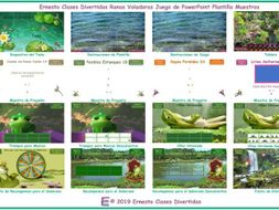Flying Frogs English PowerPoint Game TEMPLATE