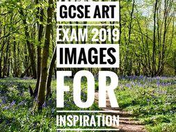 GCSE Art Exam 2019. Woodland Surroundings Images for Inspiration