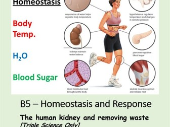 NEW AQA BIOLOGY GCSE (TS) - HOMEOSTASIS & RESPONSE - Lesson 10 – Human kidney and waste removal