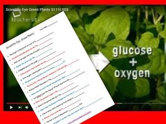 Scientific Eye: Green Plants Video Questions