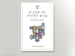 Important Lessons Series - Torah has many meanings