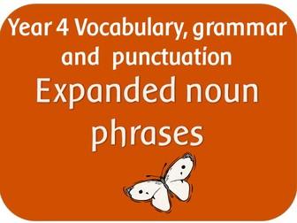 SPaG Year 4 Sentence Grammar: Expanded noun phrases