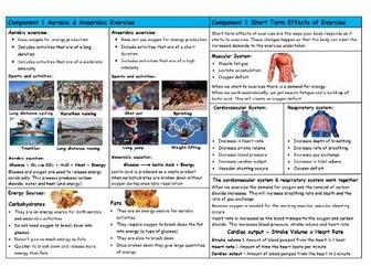 GCSE PE – Edexcel (9-1) – Aerobic & Anaerobic / Short Term Effects of Exercise - Knowledge Organiser