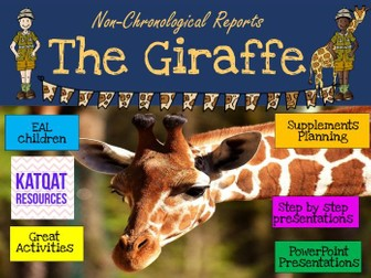 The Giraffe - Non-chronological Reports