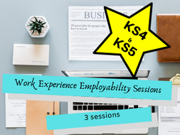 Work Experience Employability Sessions