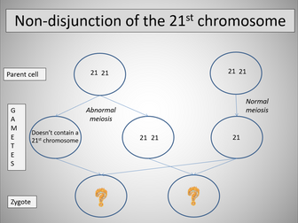 Chromosome mutations (AQA A-level Biology)