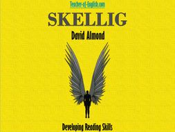Skellig by David Almond (PowerPoint, worksheets and lesson plans)