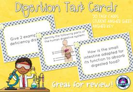 Digestion-Task-Cards-TES.zip