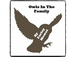 Owls In The Family - (Reed Novel Studies)