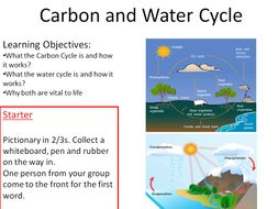 Carbon and water cycle new gcse bio 9 1 by jeffsstarscience carbon and water cycle new gcse bio 9 1 ibookread ePUb