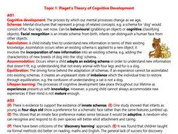 Cognitive Development Revision (A2 Psychology)