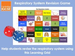 Respiratory System Learning Grid - IGCSE Physical Education Revision Game